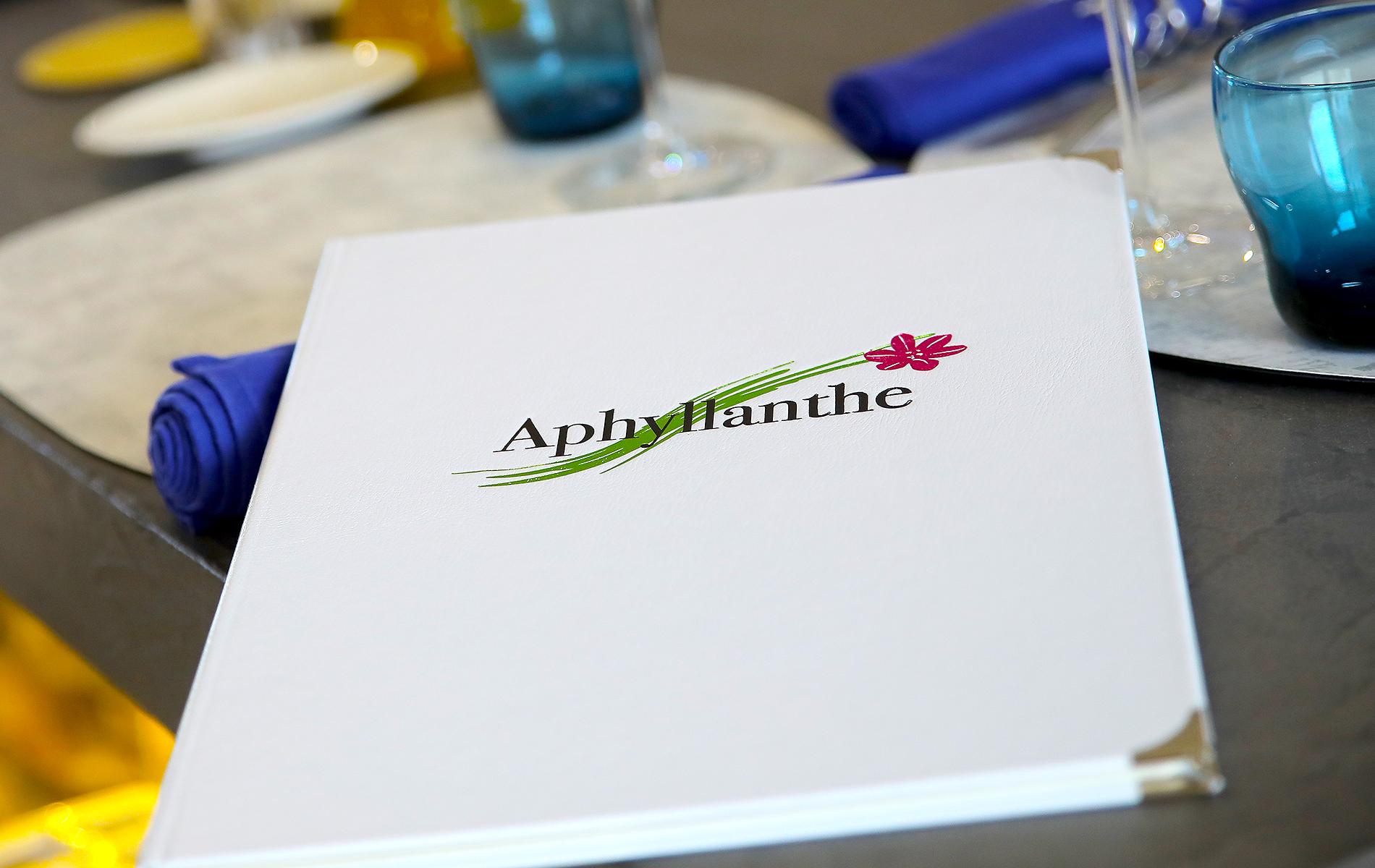 Aphyllanthe